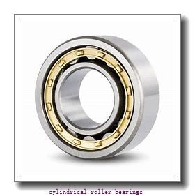 160 mm x 290 mm x 48 mm  SKF NJ232 ECM C3 Cylindrical Roller Bearings