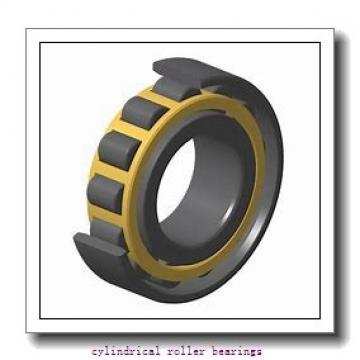 Link-Belt MU5216TV Cylindrical Roller Bearings