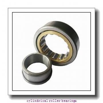 SKF RNU204 ECP Cylindrical Roller Bearings