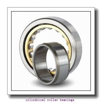 60 mm x 130 mm x mm  Rollway NJ 312 EM Cylindrical Roller Bearings
