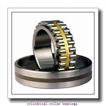 55 mm x 120 mm x mm  Rollway NJ 311 EM Cylindrical Roller Bearings
