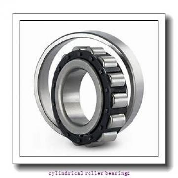 55 mm x 120 mm x mm  Rollway NU 311 EM Cylindrical Roller Bearings