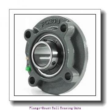 AMI BNFL6-19MZ2CEW Flange-Mount Ball Bearing Units