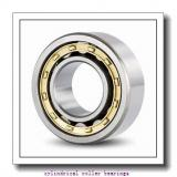 160 mm x 290 mm x 48 mm  SKF NJ232 ECM C3 Cylindrical Roller Bearings