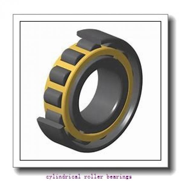 Link-Belt MU5216TV Cylindrical Roller Bearings #1 image