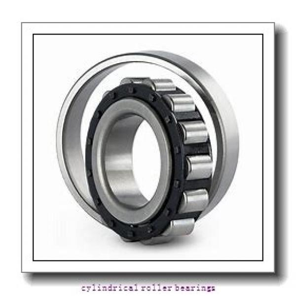 American Roller SCS 166 Cylindrical Roller Bearings #1 image